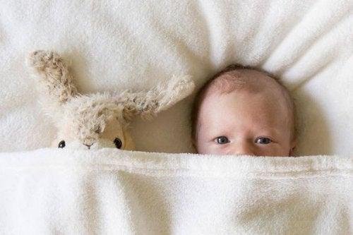Neugeborene beobachten Mutter mit Hase