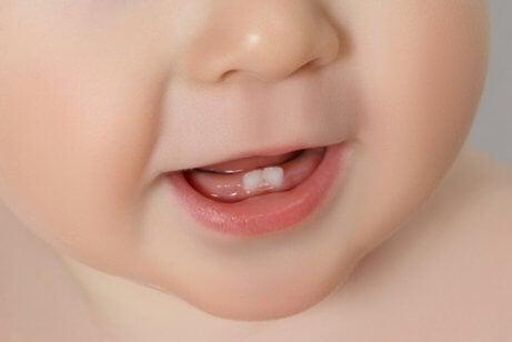 Alles was du über erste Zähne beim Baby wissen musst