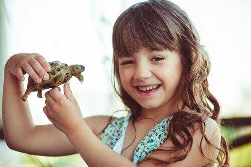 Die Schildkrötentechnik - Mädchen hält Schildkröte