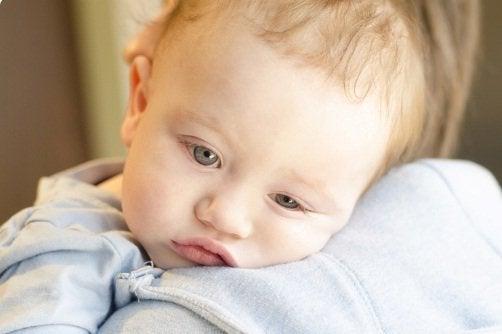 Fieber deines Babys - baby-fieber