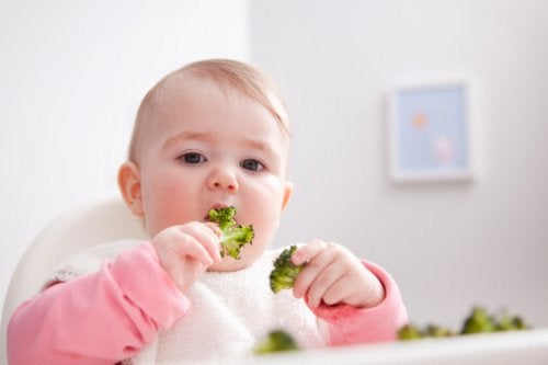 Gewicht deines Babys - Gewicht-deines-Babys-isst-Brokkoli