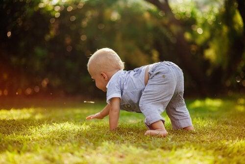 Glückliche Kindheit: Kind krabbelt draußen