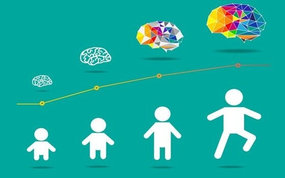 Entwicklung des kindlichen Gehirns