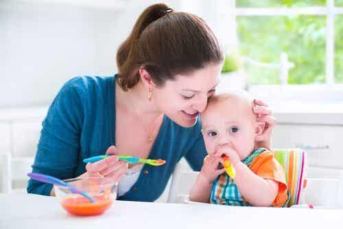 Herzhafte Rezepte für Babys von 6 - 9 Monaten
