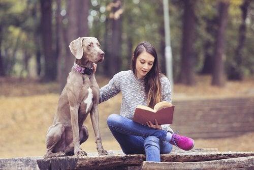Bücher für Jugendliche können das Interesse am Lesen wecken