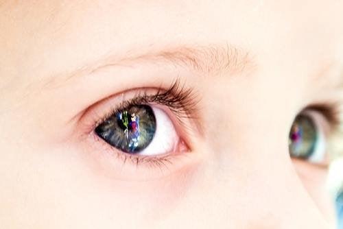 Farbwahrnehmung: Was und wie Babys sehen!