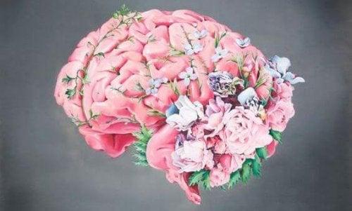 Das Gehirn untergeht zahlreichen Veränderungen während der Schwangerschaft.