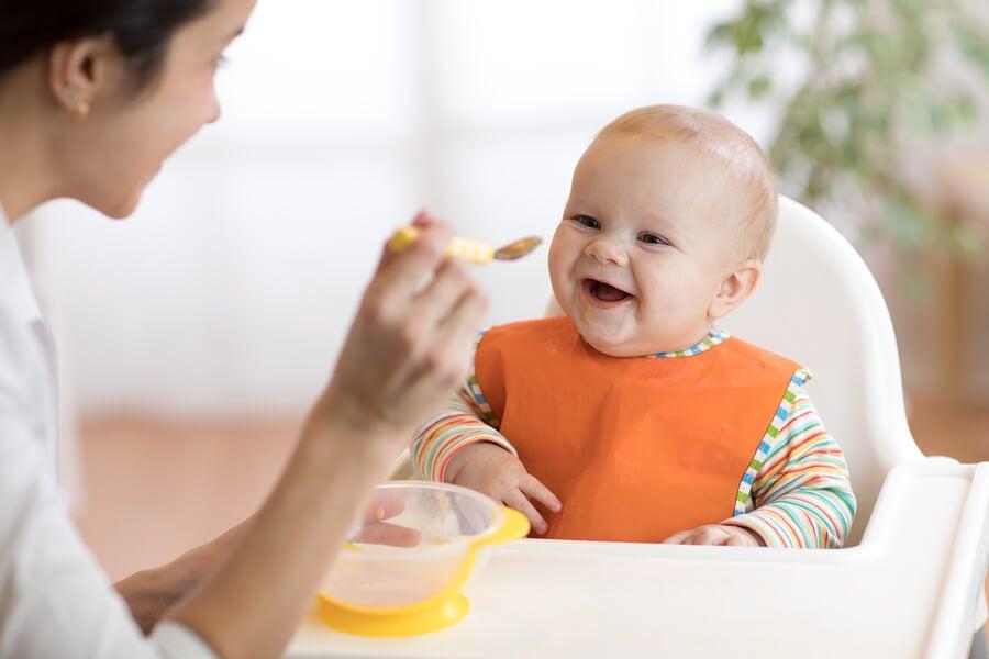 Obstbreie für Babys ab 6 Monaten