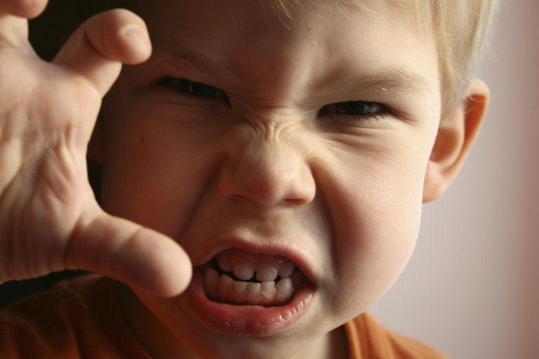Wut bei Kindern sollte gelindert werden, indem sie lernen ihre Emotionen zu kontrollieren.