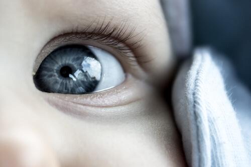 Neugeborene haben blaue Augen, die etwas gräulich sind.