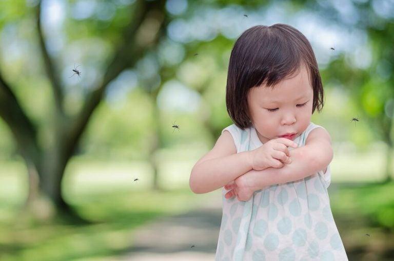 Warum wird mein Kind immer von Mücken gestochen?