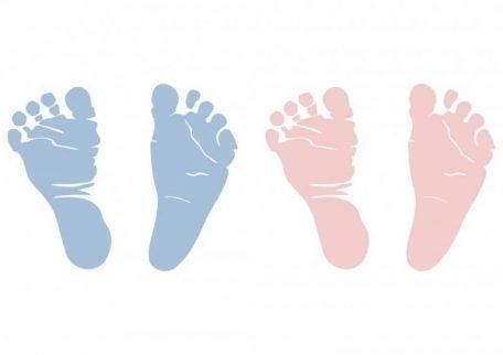 Die Ramzi-Methode: Das Geschlecht des Babys herausfinden