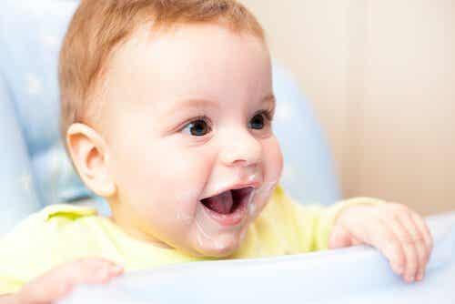 Kann ich meinen Baby Joghurt zum Essen geben?
