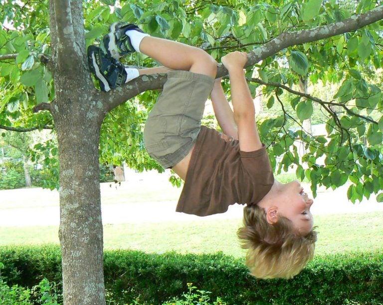 Wurzeln und Flügel für Kind am Baum
