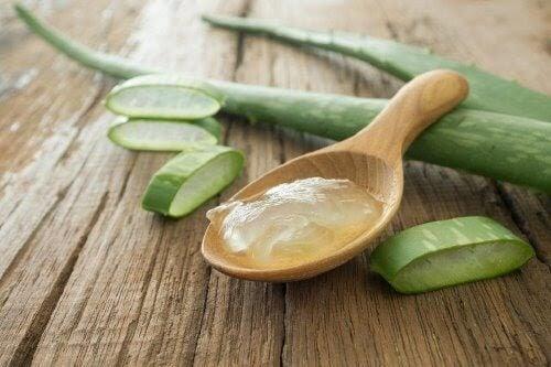 Aloe Vera zur Narbenbehandlung