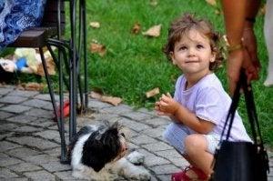 Baby und Haustier unterhalten sich