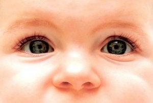 Die Augenfarbe und die Genetik
