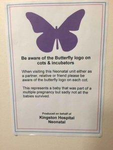 violetter Schmetterling