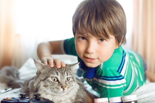 Vorteile von Haustieren - Vorteile_von_Haustieren-2