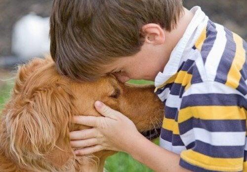 Die Vorteile von Haustieren