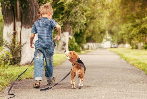 Vorteile von Haustieren - Vorteile_von_Haustieren