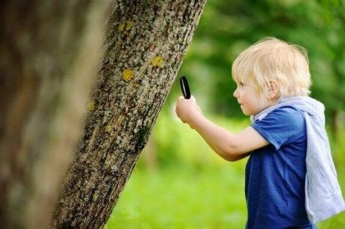 Naturerziehung ergänzt das traditonelle Lernen