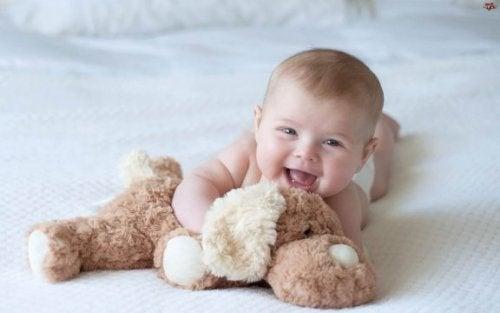 Stofftiere sind beliebte Taufgeschenke für Babys