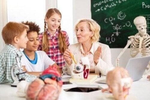 Neurodidaktik - Kinder im Unterricht