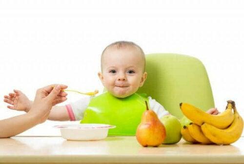 Empfehlenswerte Früchte für die Beikosteinführung sind Äpfel, Bananen und Birnen
