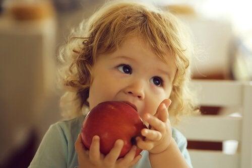 Äpfel sehr erfrischend und feuchtigkeitsspendend, da sie zu 85% aus Wasser bestehen.