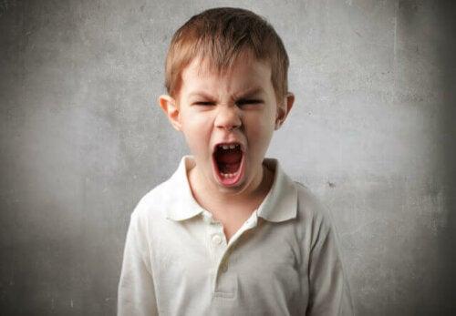 Nein akzeptieren - schreiender Junge